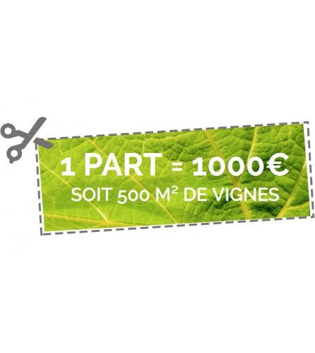 1 part de 500 m² de vignes