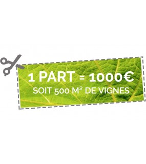 1 part de 500m² de vignes