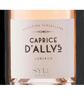 Vin rosé pâle élégant fruité Minéral Méditerranéen AOC Luberon